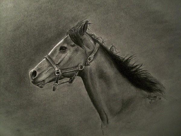 Horse Head Print by Michael Trujillo