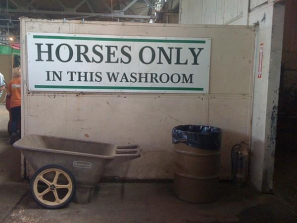 Horses Only Print by Bill Kellett