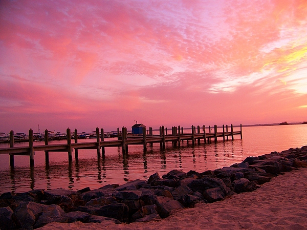 Hot Bay Sunset Print by Trish Tritz