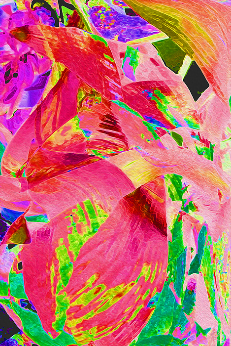 Stephanie Grant - Hot Pink Leaf Abstract