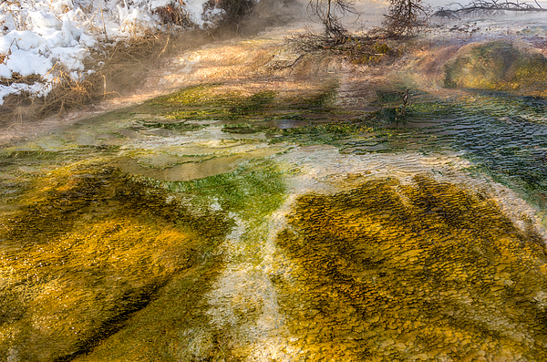 Hot Springs Pool Print by Sue Smith