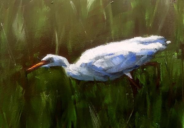 Gary Bruton - Hunting Egret
