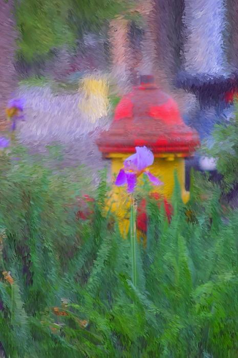 Iris And Fire Plug Print by David Lane