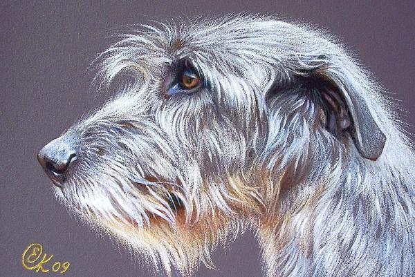 Irish Wolfhound  2 Print by Elena Kolotusha
