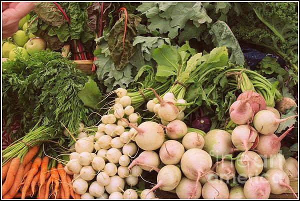 Dora Sofia Caputo Photographic Art and Design -  It is Harvest Time