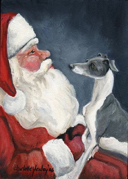 Italian Greyhound And Santa Print by Charlotte Yealey