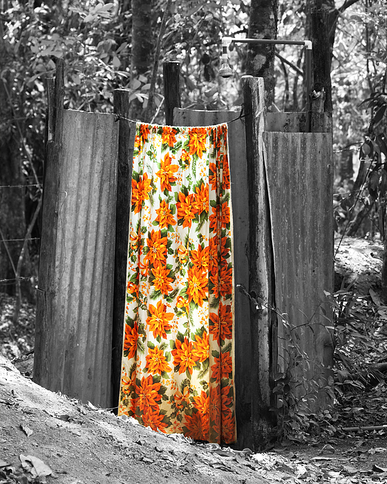 Jungle Shower Print by RC Photography