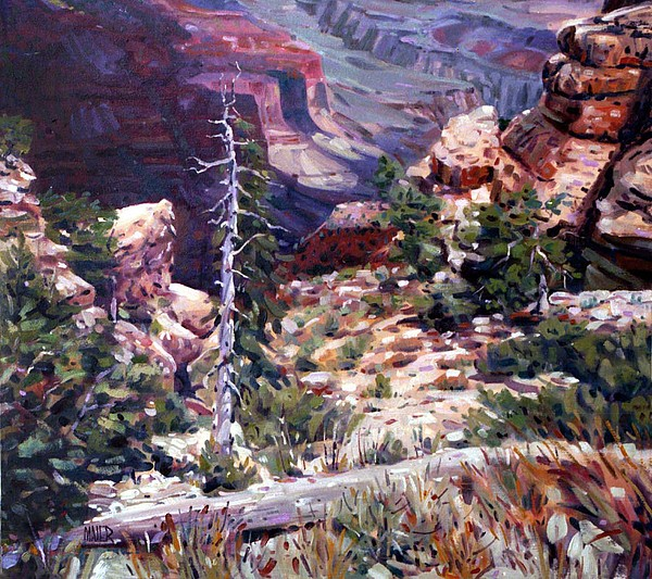 Kaibab Trail Print by Donald Maier