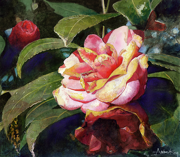 Karma Camellia Print by Andrew King