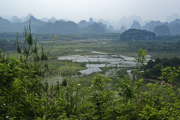 Karst Landscape Of Guangxi Print by Michele Burgess