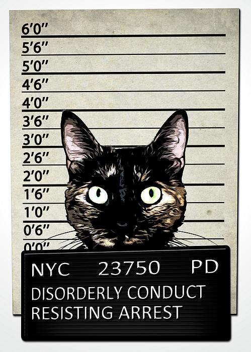 Kitty Mugshot Print by Nicklas Gustafsson