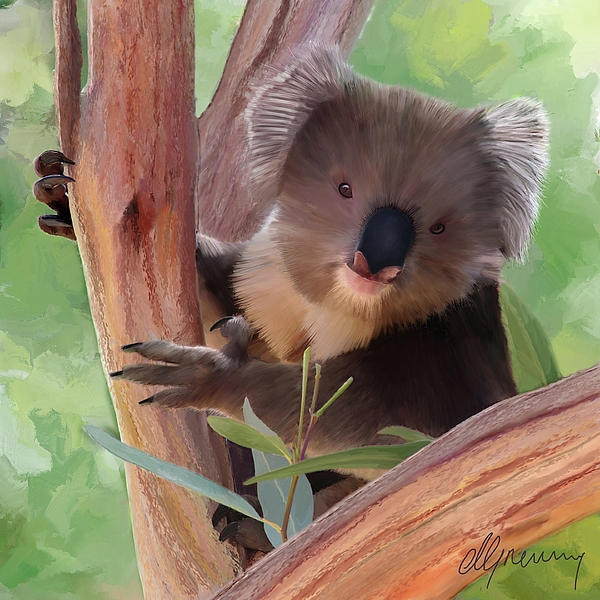 Koala  Painting Print by Michael Greenaway