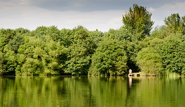 Lake Jetty Dinton Pastures Lakes And Nature Reserve Shore Line Print by Andy Smy