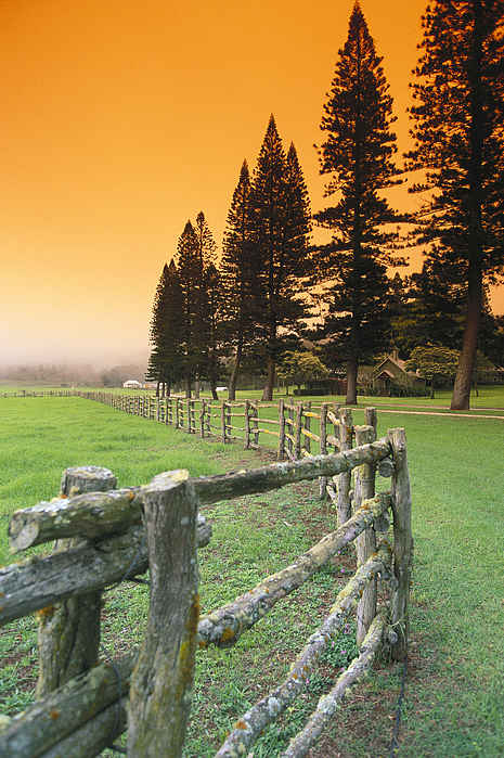 Lanai, City View Print by Ron Dahlquist - Printscapes
