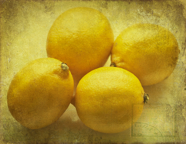 Lemons Print by Nomad Art And  Design