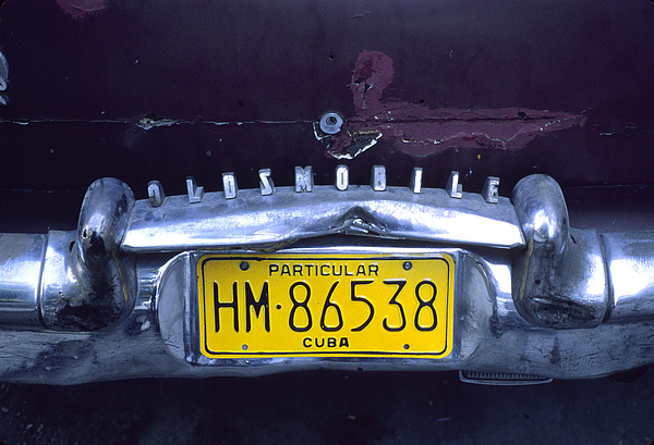 License Plate Indicating The Owner Print by Taylor S. Kennedy