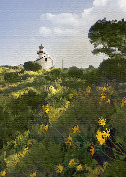 Lighthouse Daisies Print by Sharon Foster