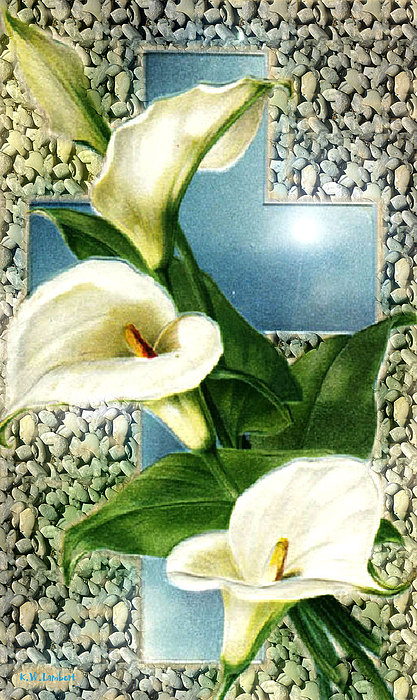 Lily Print by Kenneth Lambert