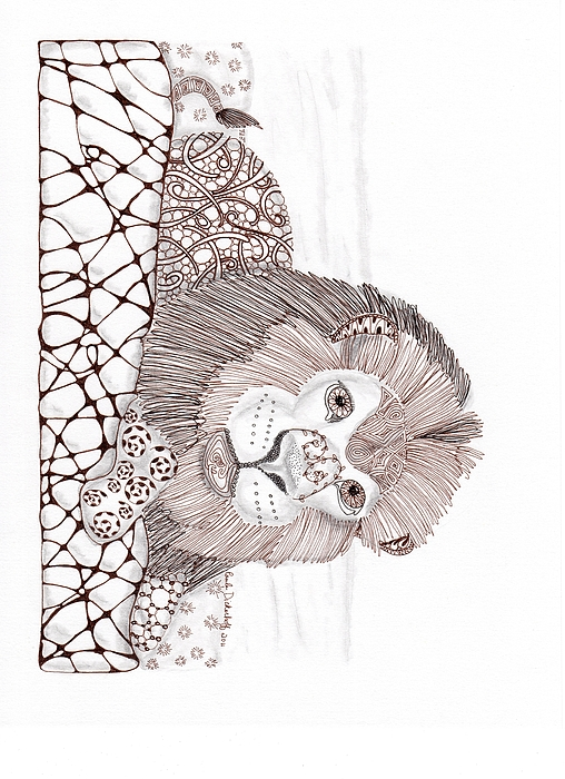 Lion Print by Paula Dickerhoff