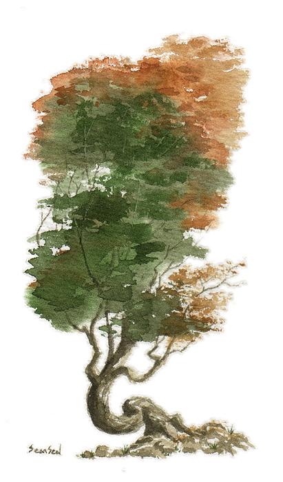 Little Tree 15 Print by Sean Seal