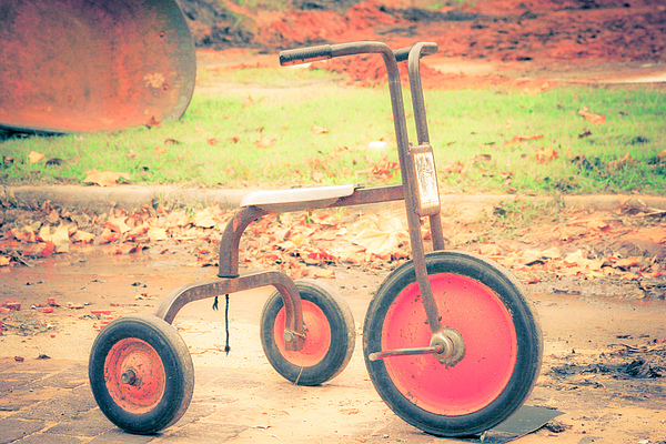 Little Wheels Print by Toni Hopper