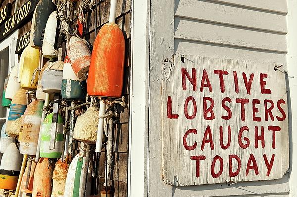 Lobster Shack. Print by John Greim