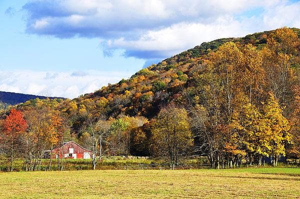 Lone Barn Fall Color Print by Thomas R Fletcher