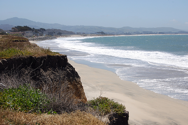 Looking Back At Half Moon Bay From The North Print by Carolyn Donnell