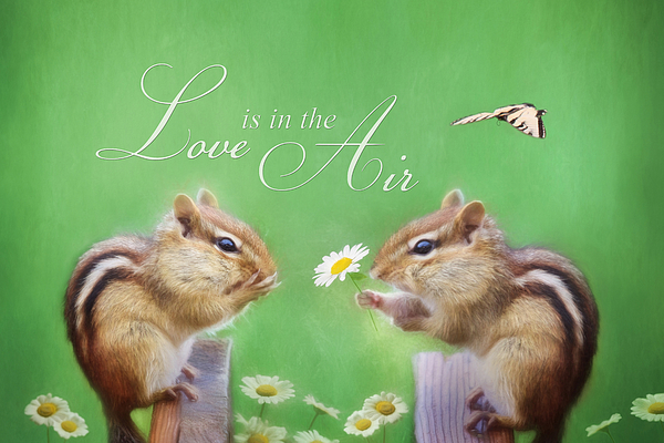Love Is In The Air Print by Lori Deiter