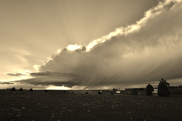 Ed Sweeney - Low-Topped Supercell Black and White