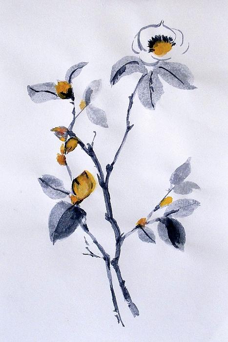 Magnolia Print by Sibby S