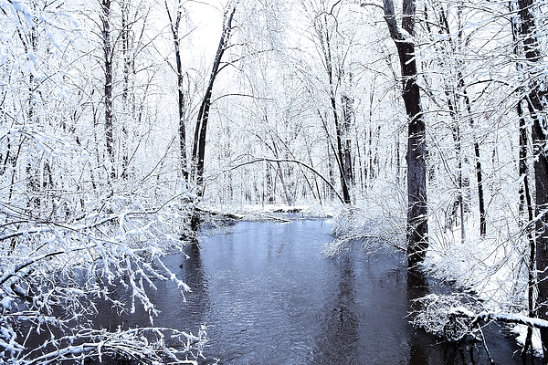 Michgan Winter 10 Print by Scott Hovind
