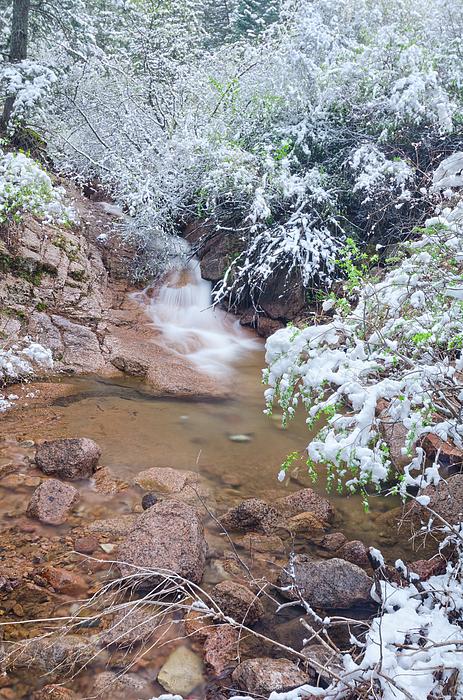 Bijan Pirnia - Mid May Snow