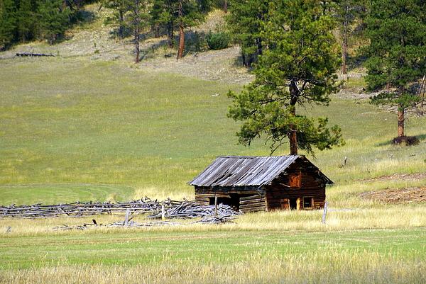 Montana Ranch 3 Print by Marty Koch