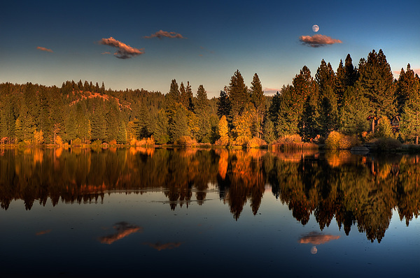 Moon Over Mill Pond Print by Mick Burkey