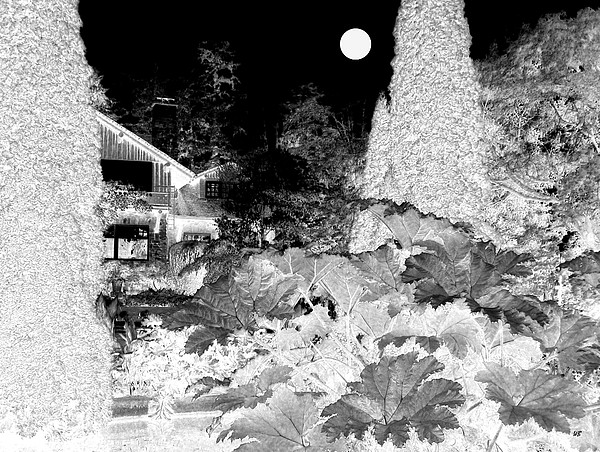 Moon Over Stanley Park Print by Will Borden