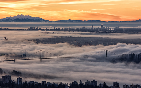 Morning Fog Print by DGS Full Spectrum Photography