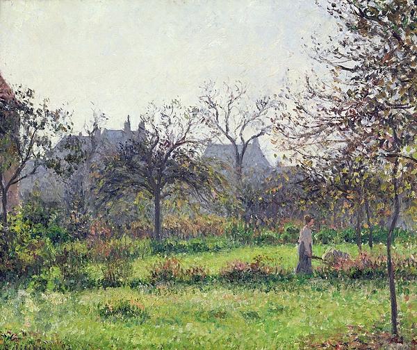 Morning Sun Print by Camille Pissarro