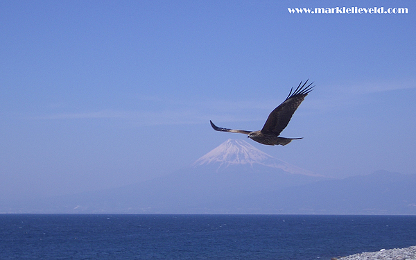 Mount Fuji With Eagle Print by Mark Lelieveld