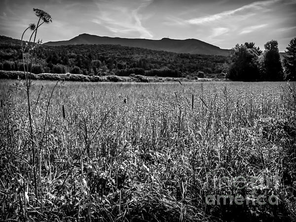 James Aiken - Mount Mansfield in Black and White