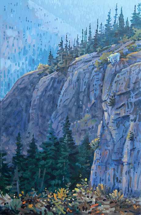 Mountain Goat Print by Donald Maier