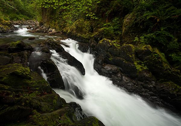 Mountain Stream Print by Mike Reid