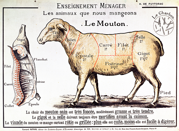 Mutton Print by French School