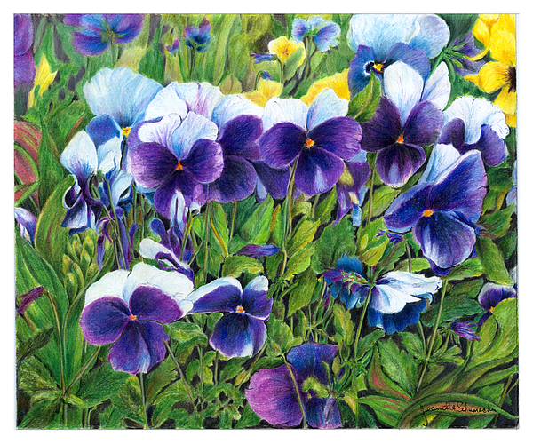 My Field Of Flowers Print by Jeanette Schumacher