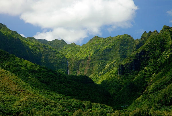 Na Pali Green Print by Mike  Dawson