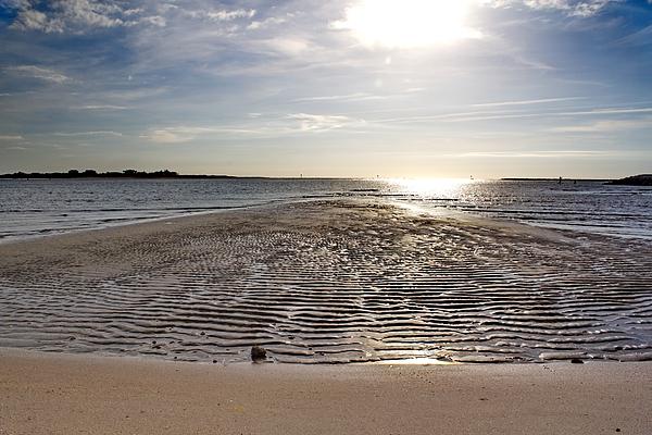 Brian Hamilton - Natural Pathway to the Ocean