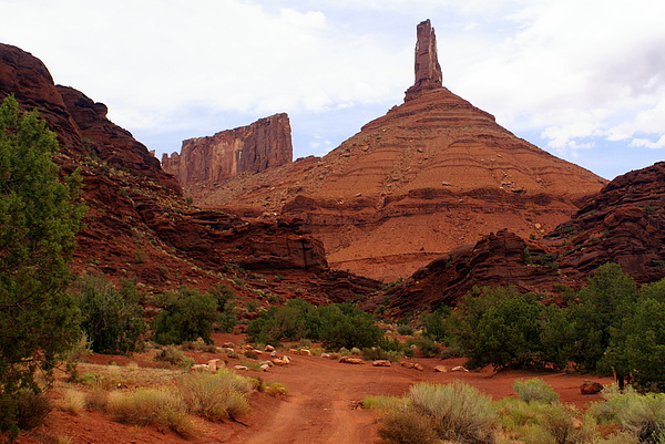 Near Moab 5 Print by Marty Koch
