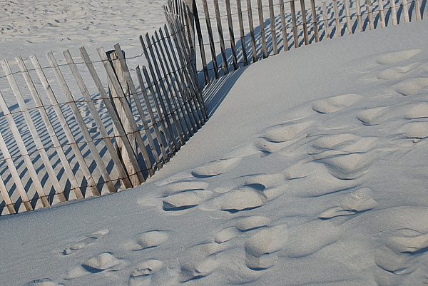 New England Footprints Print by Gene Sizemore
