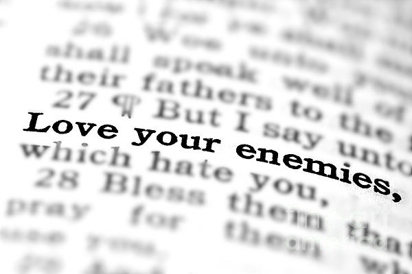 new testament quotes about love quotesgram