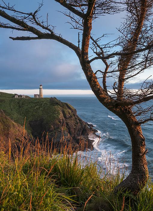 North Head Lighthouse 2 Print by Greg Vaughn